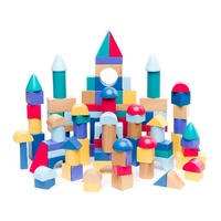 Build and Play Blocks Set of 100